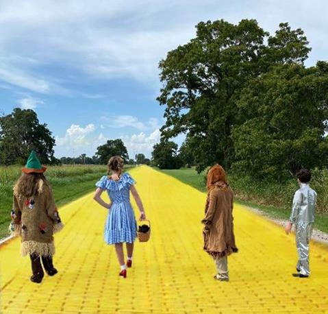 On the yellow brick road - School Performance